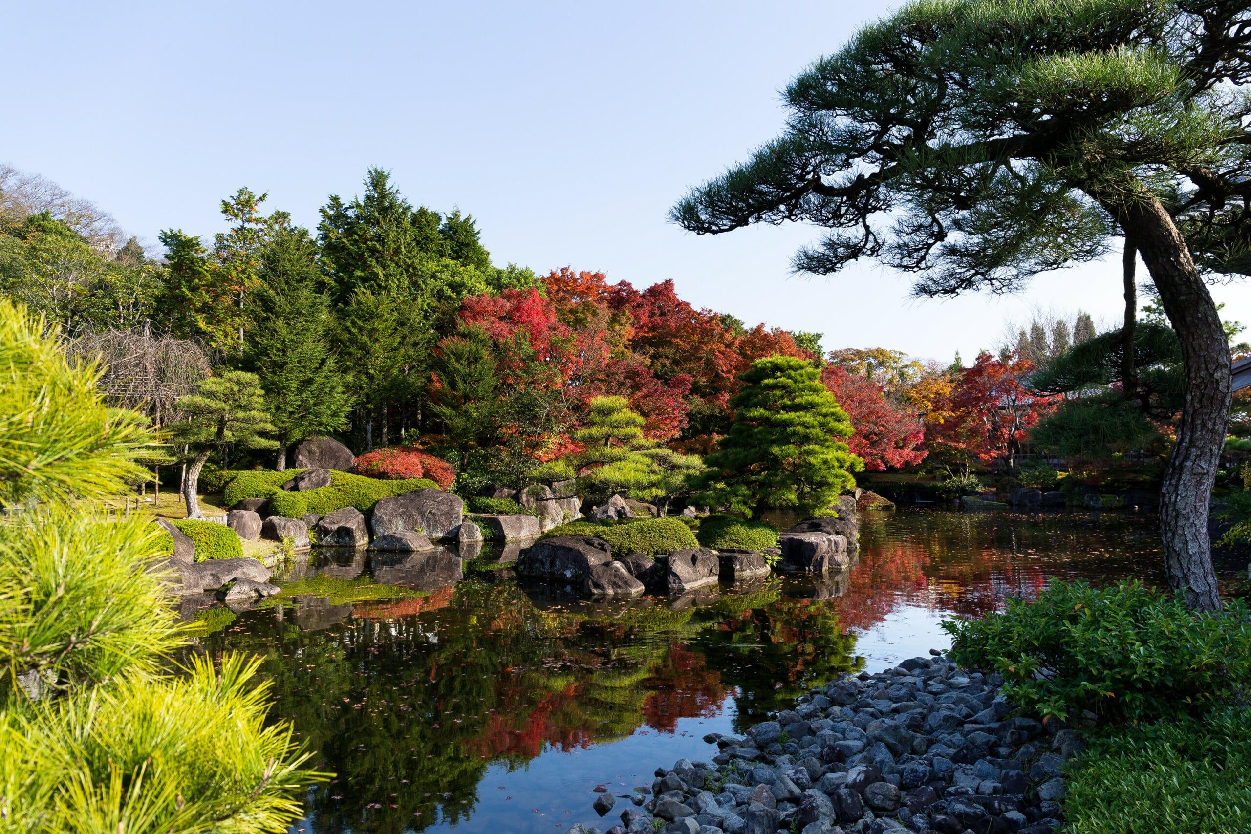 Japanese garden with autumn