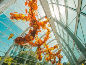 Chihuly glass ceiling seattle orange glass sculpture from underneath