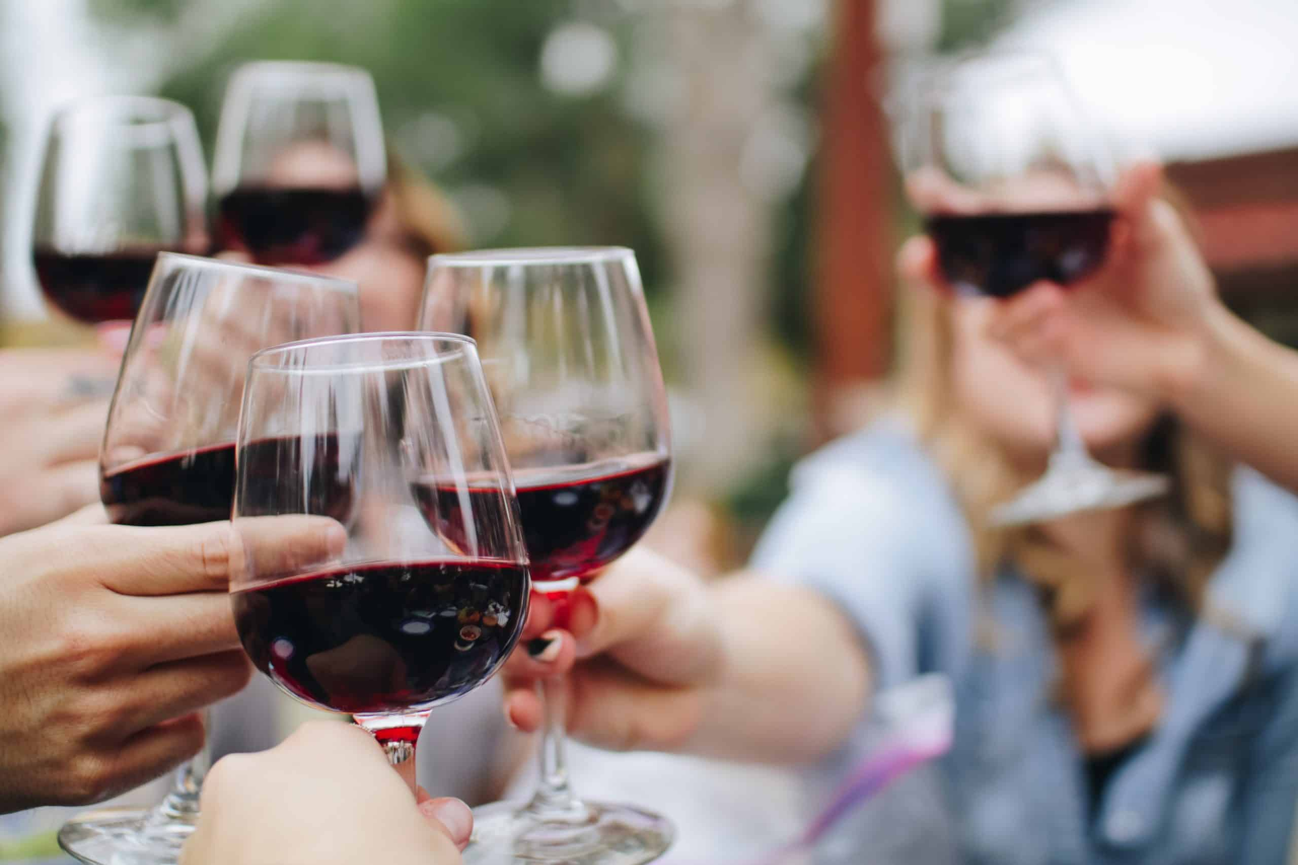 a group of friends toasting clear glasses of red wine on a clear, sunny afternoon